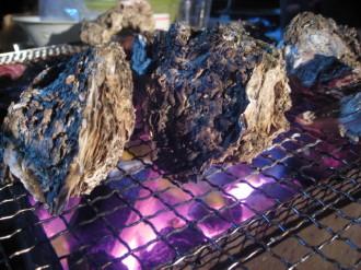 炭で焼かれる牡蠣達・・・