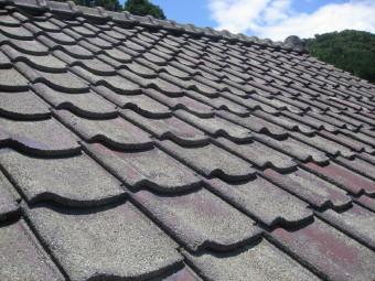 屋根瓦洗浄後